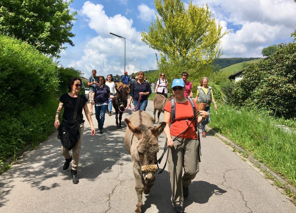 Frühjahrs Wildkräuter Eselwanderung im Mai
