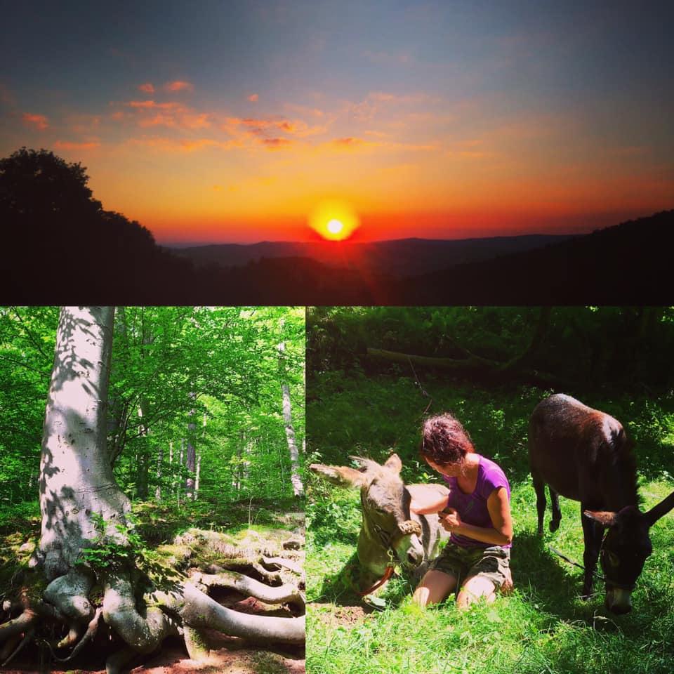 Märchen-Eselwanderung im Juli & August