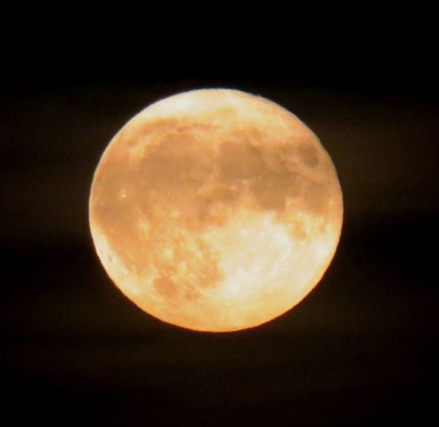 ... WoW der Mond am 2019-09-14 über Wald-Michelbach