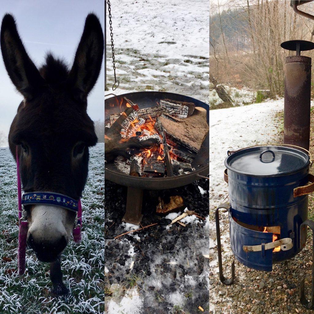 Glühwein-Winterzauber Eselwanderung